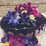 Bluberry Garden Cake